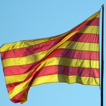 Amb el Govern legítim de Catalunya. Contra l'ambigüitat del PSC. Per una nova majoria a Sant Pere de Ribes